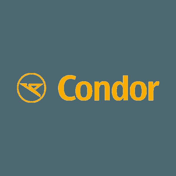rainmaker partner logo - condor